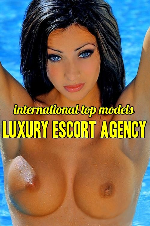 oslo escort agency eskorte elverum